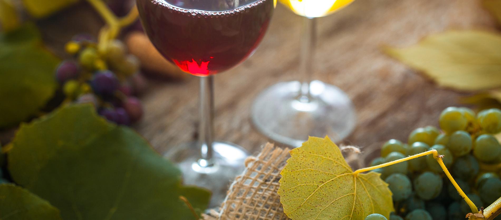 Två glas vin på vinprovning